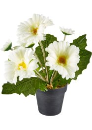 Plante artificielle Gerbera, bpc living