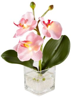 LED Kunstblume Orchidee, bpc living bonprix collection